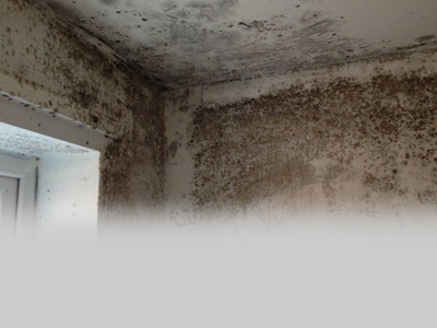 Airtech helps landlords tackle mould and condensation