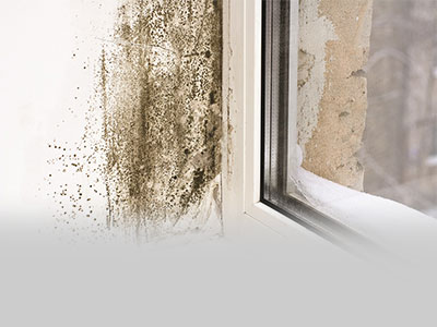 A mouldy wall next to a window caused by condensation