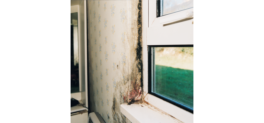 mould and condensation around window
